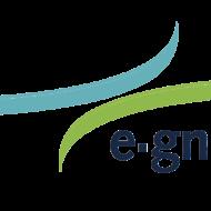 e-gnition driverless